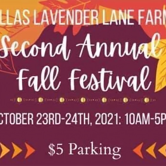 Dallas Lavender Lane Fall Festival