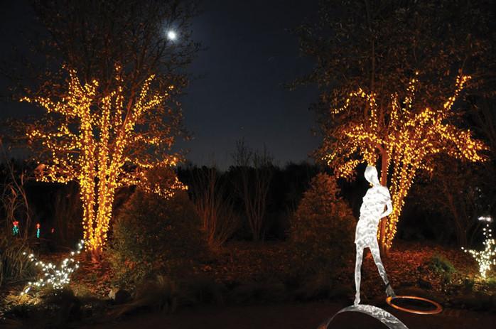 DSBG-Christmas-Lights-2.jpg