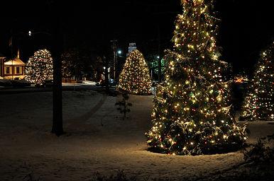 Christmastown USA Trees.jpg