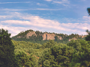 Insider's Guide to Gaston County