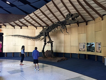 T Rex Scheile Museum Gastonia.jpg