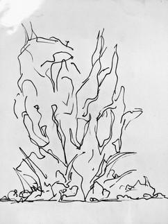 Sketch 33.jpg