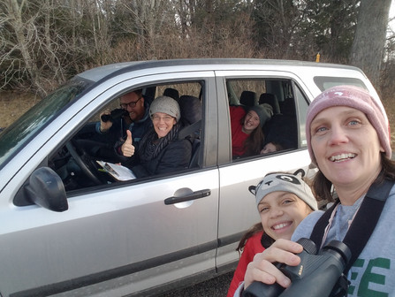 Birding in the Time of Covid: Friends Join Together for the 2020 Amherst Area Christmas Bird Count