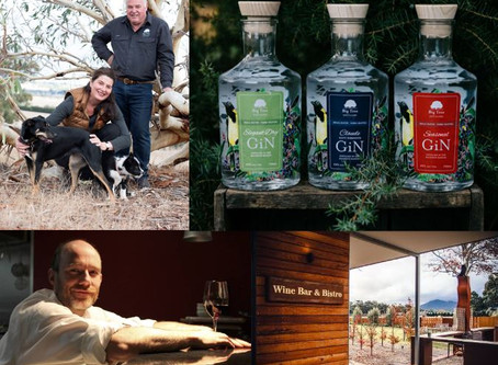 Come and celebrate WORLD GIN DAY with Big Tree GiN