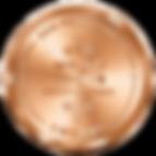 SFWSC-Bronze (1).png