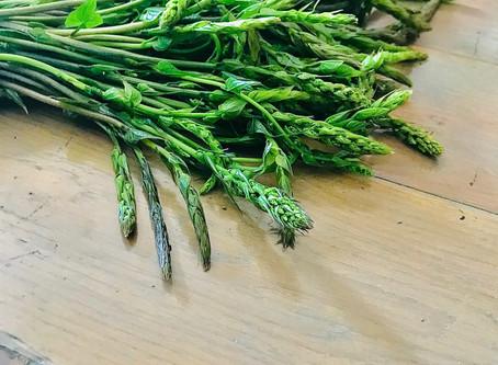 Clin d'oeil sur le respounchous : un produit de saison et local !