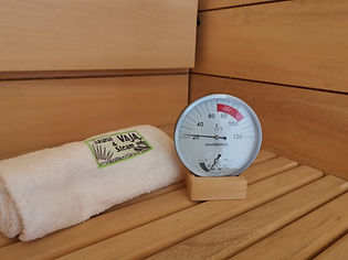 Vaja Products Thermometer.jpg