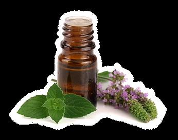 Vaja Products Frangranced Oils.png