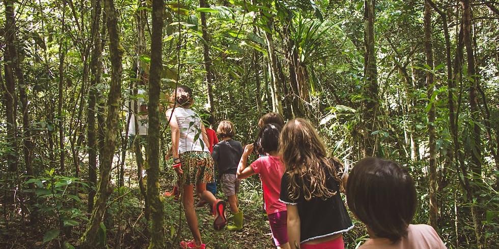Eco-alfabetização e colônia de férias na ecovila