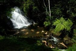 cachoeira2 maria teresa ponce