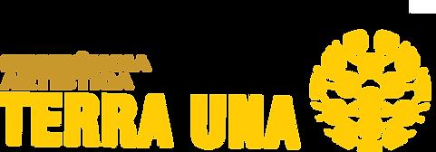 logoif2017.png