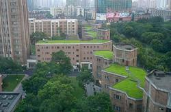 גגות ירוקים - מתאוריה לעשייה