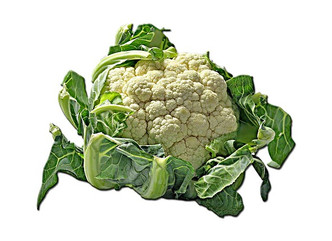 CAULIFLOWER: GREAT IN SALADS OR AS A SIDE TO ANY DISH! DISCOVER THE GOODNESS OF THE CAULIFLOWER + SO