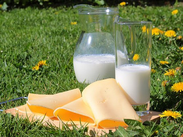 CALCIUM: WHY IT'S IMPORTANT AND THE FOOD THAT WILL PROVIDE IT