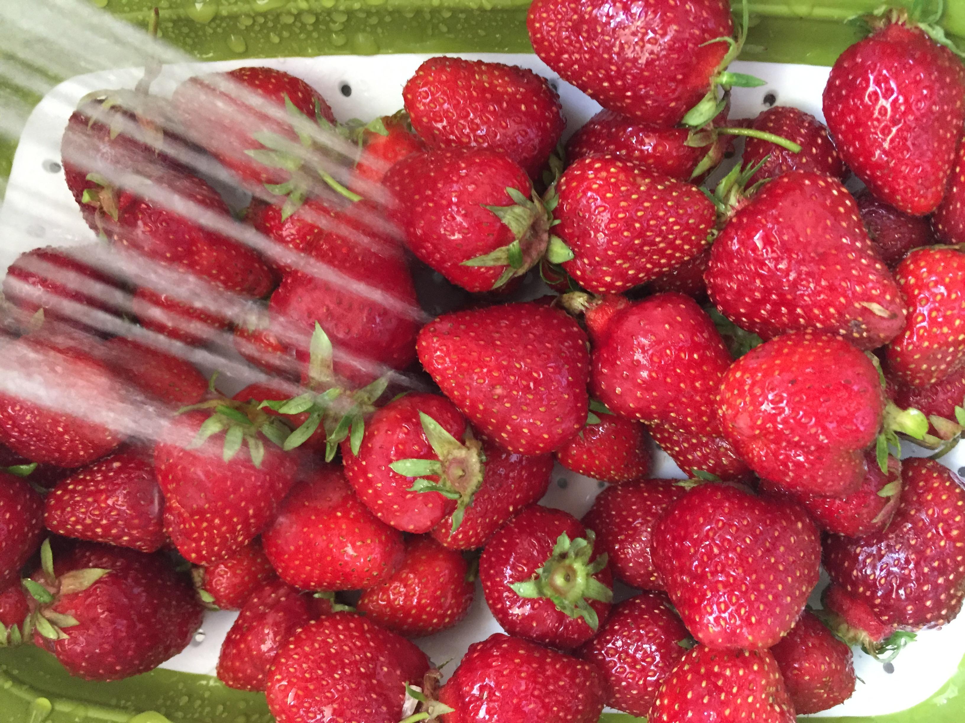 foodprepstrawberries
