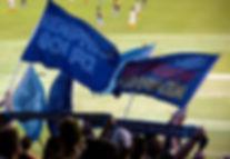 901-Flags.jpg