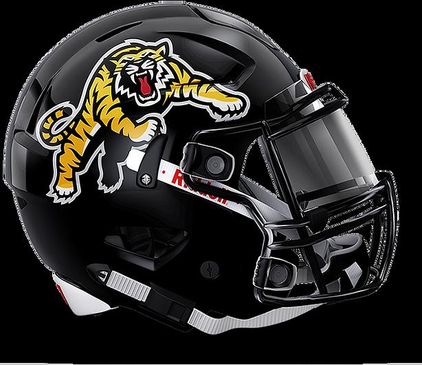 TiCats-Helmet2.png