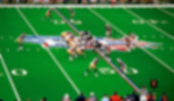 SB36-Field3.jpg