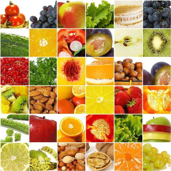 Gastronomia 017-Quadriculado de hortifruti