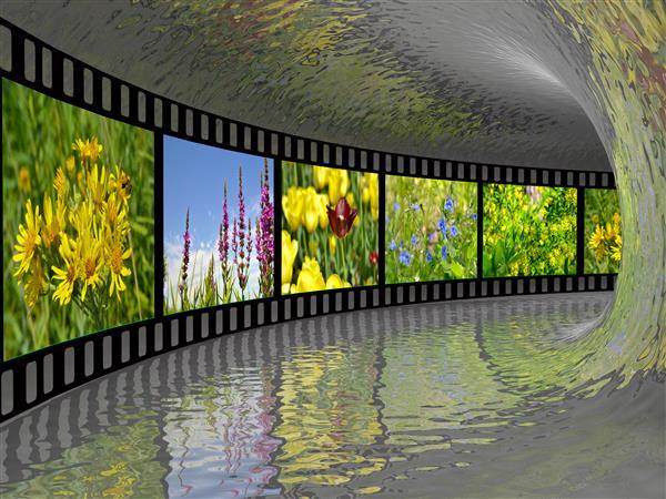 Artes visuais 130-Tunel 3D de fotos.jpg