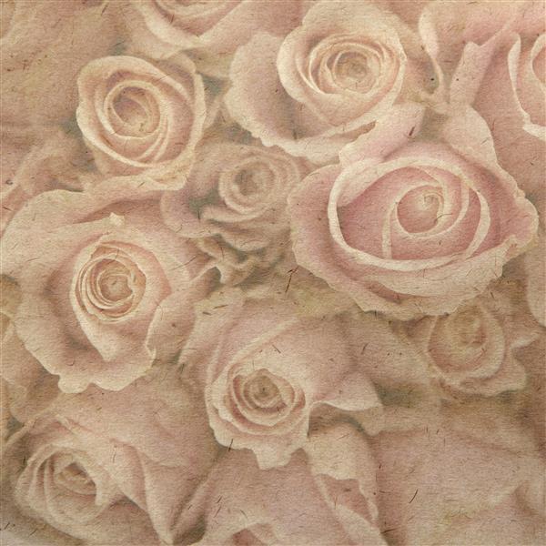 Floral 147-Rosas
