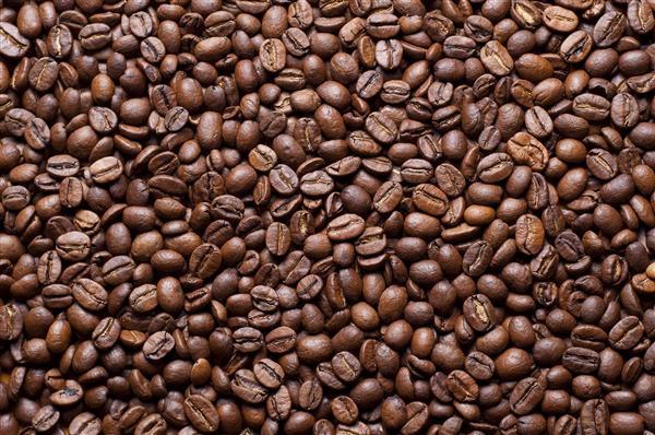 Gastronomia_024-Grãos_de_café