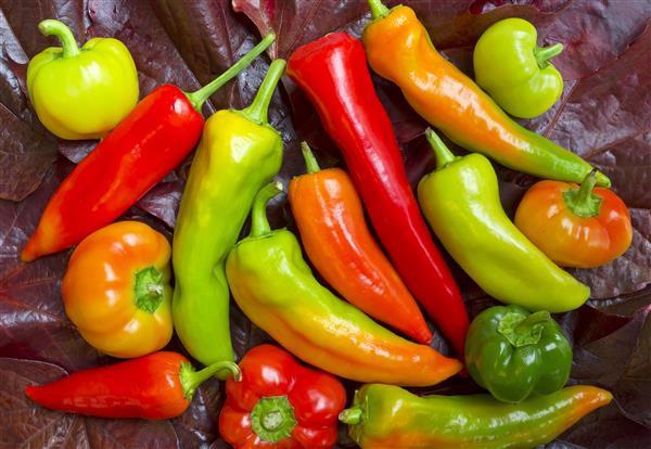 Gastronomia 020-Pimentas