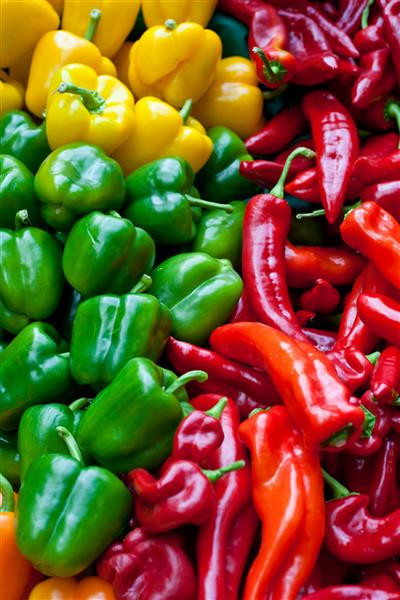 Gastronomia 034-Pimentas