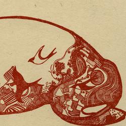 Migratory Patterns, bull detail
