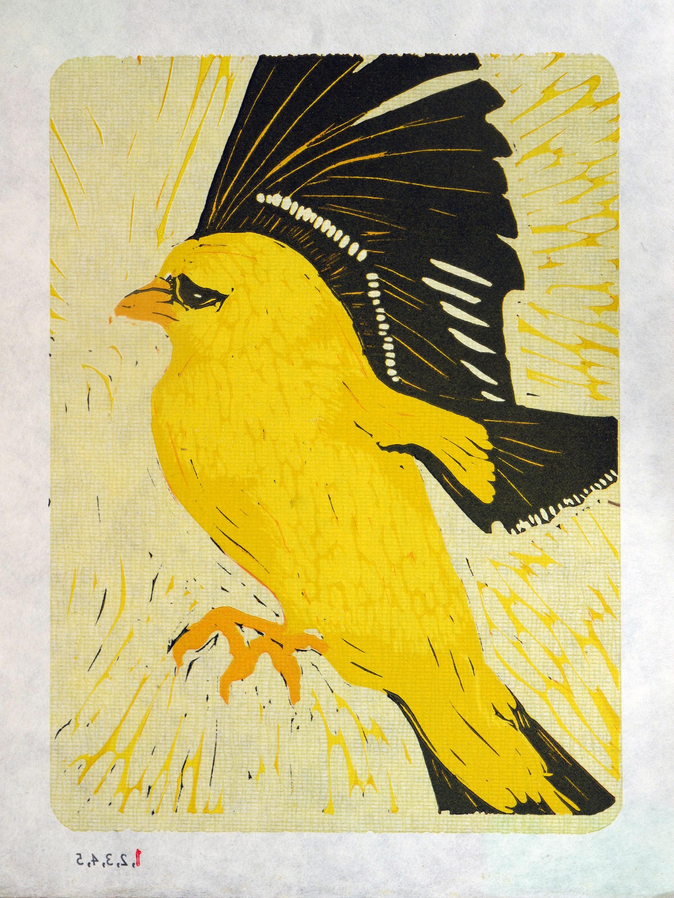 Northern Goldfinch