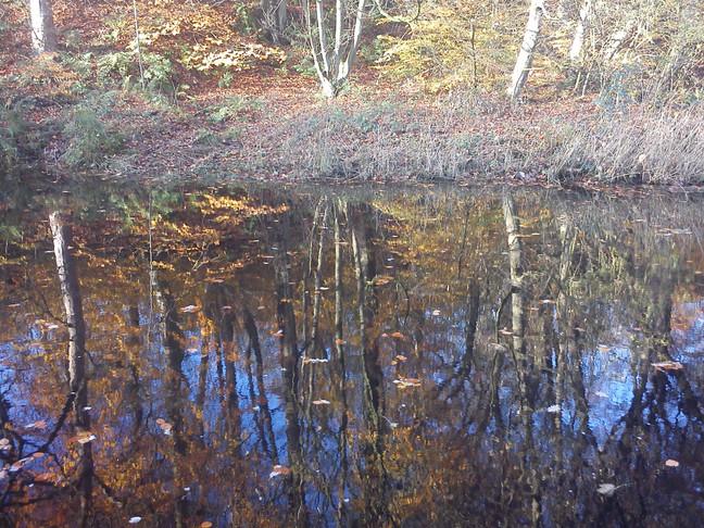Canal Walk: Marsden to Slaithewait