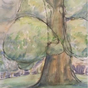 Manchester Poplars