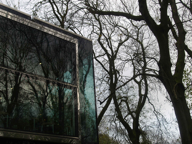 Amongst the Trees                                   in Whitworth Park & Gallery