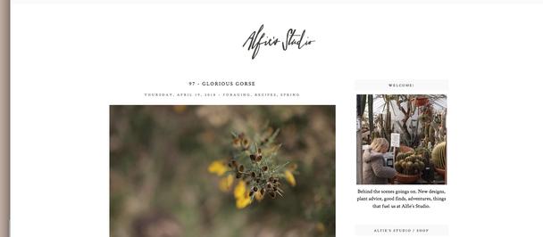 Alfies Studio & Blog
