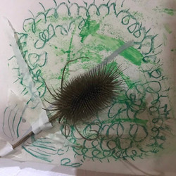 thistle and drawing