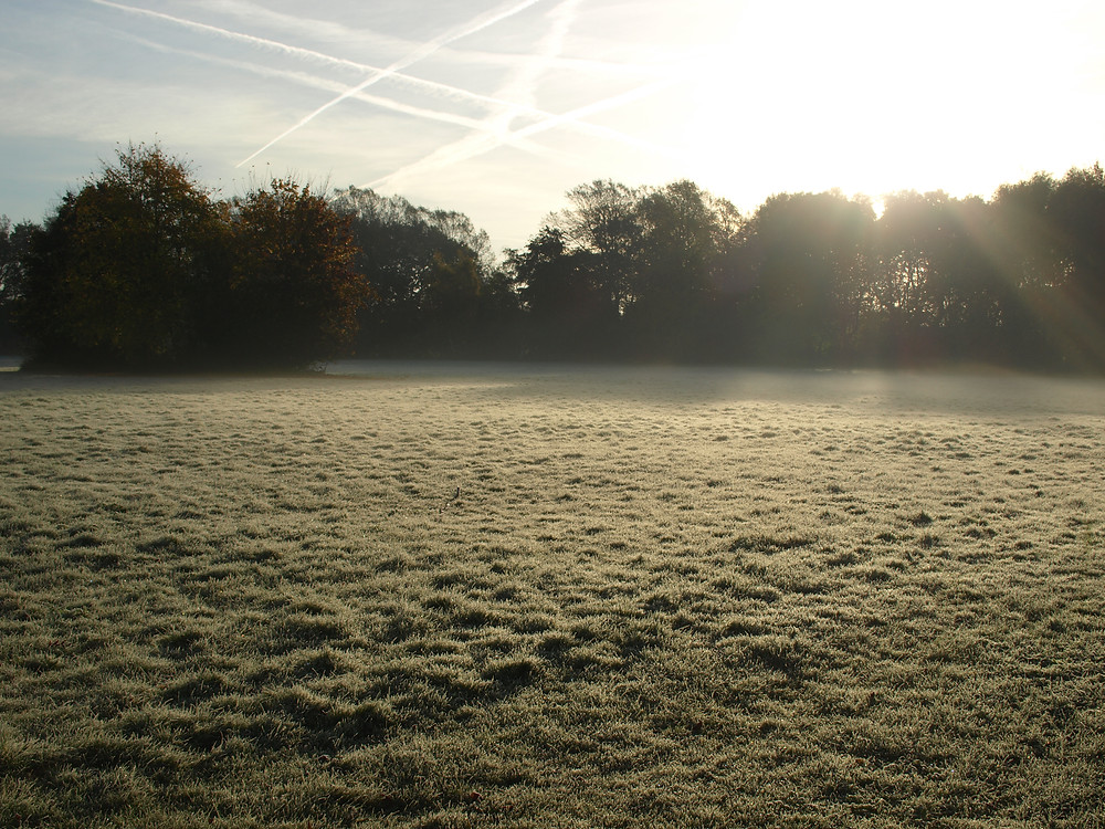 Birchfields Park Frosty Field Oct 2016 R Story