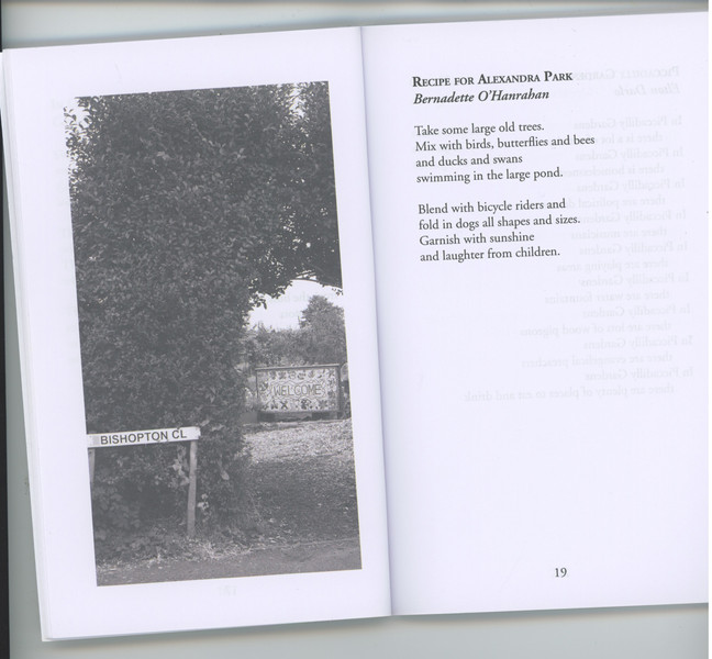 A Leaf from our book*** #treestory