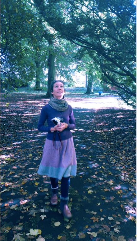 Autumn Awe