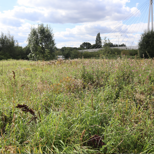 Finding new Green Spaces in Manchester