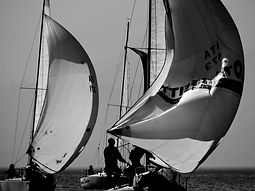 barche a vela regata spinnaker