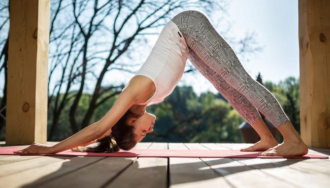 Vini Yoga