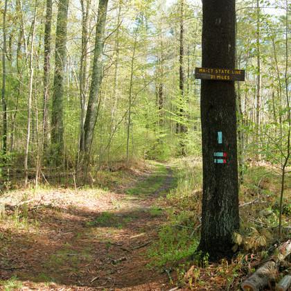 Natchaug Trail 05-16-20