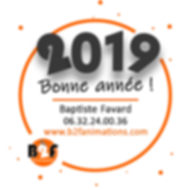 Signature de mail_voeux 2019_BF VF.png