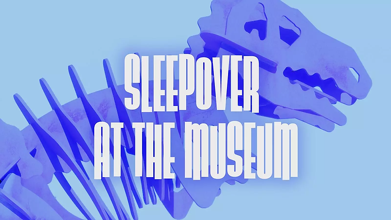 National Symphony Orchestra: Sleepover at the Museum