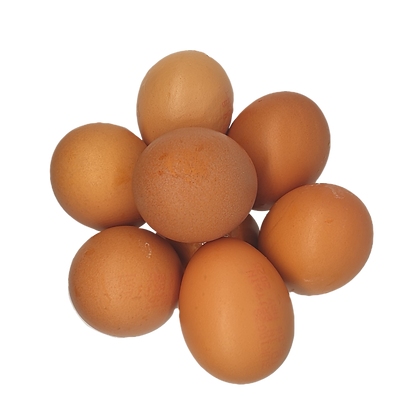 Local Eggs (Box of 6)