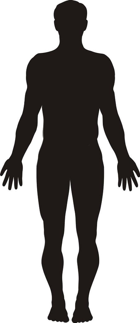 bigstock-Human-Body-Silhouette-1202948.j