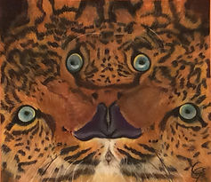 The Leopard's Illusion.jpg