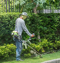 Man trimming grass with weed eater
