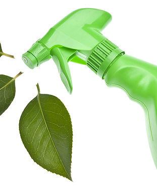 bigstock-Green-Cleaning-7948235.jpg
