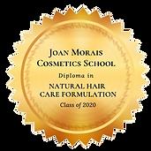 formulator badge.png